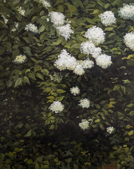 Verdures, Boules blanches, Huile sur toile, by Laure Boin